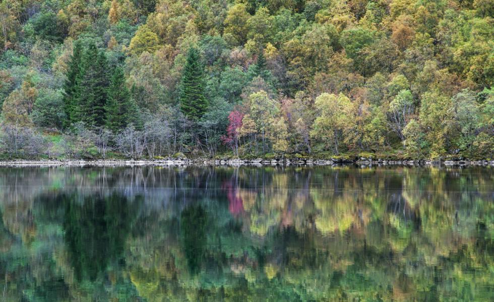 Reflejos en el lago de Lygnstoyl, en Noruega.