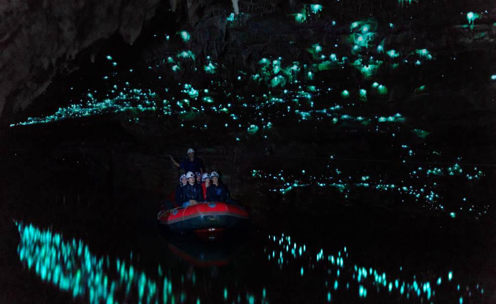 Travesía en barca en la cueva de Glowworm, en Waitomo (Nueva Zelanda).