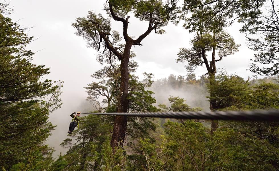 El circuito de tirolinas Vuelo del Cóndor, en la reserva chilena Huilo Huilo.