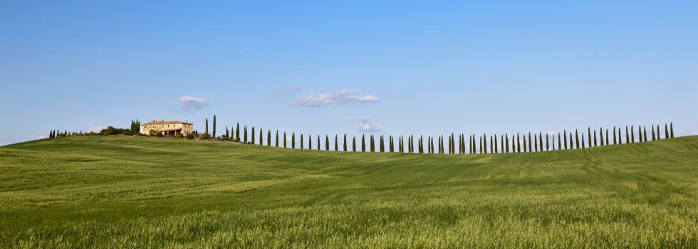 Una granja entre campos de maíz cerca de San Quirico d'Orcia, en la Toscana.
