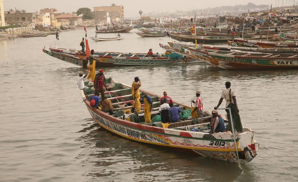'Pirogues' en el río Senegal, en Saint Louis.