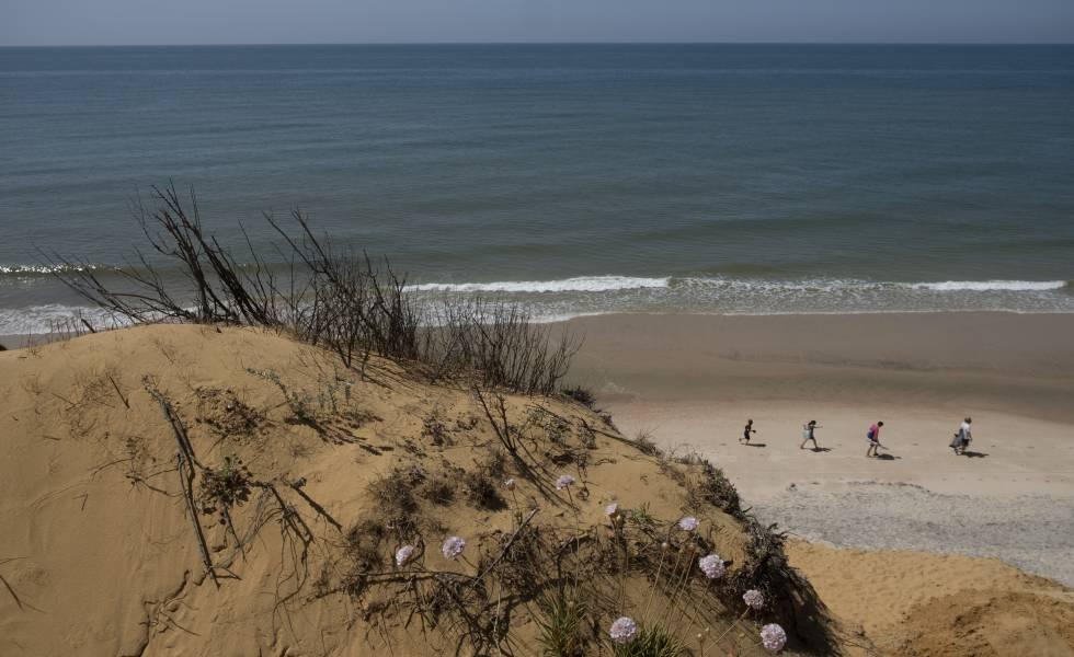 Las dunas y la playa en el acantilado de El Asperillo (Huelva).