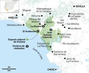 Mil maneras de disfrutar en Doñana