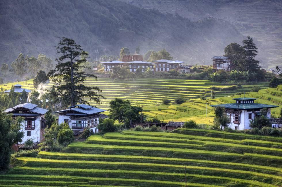 Casas de arquitectura tradicional y campos de arroz en el valle de Punakha.