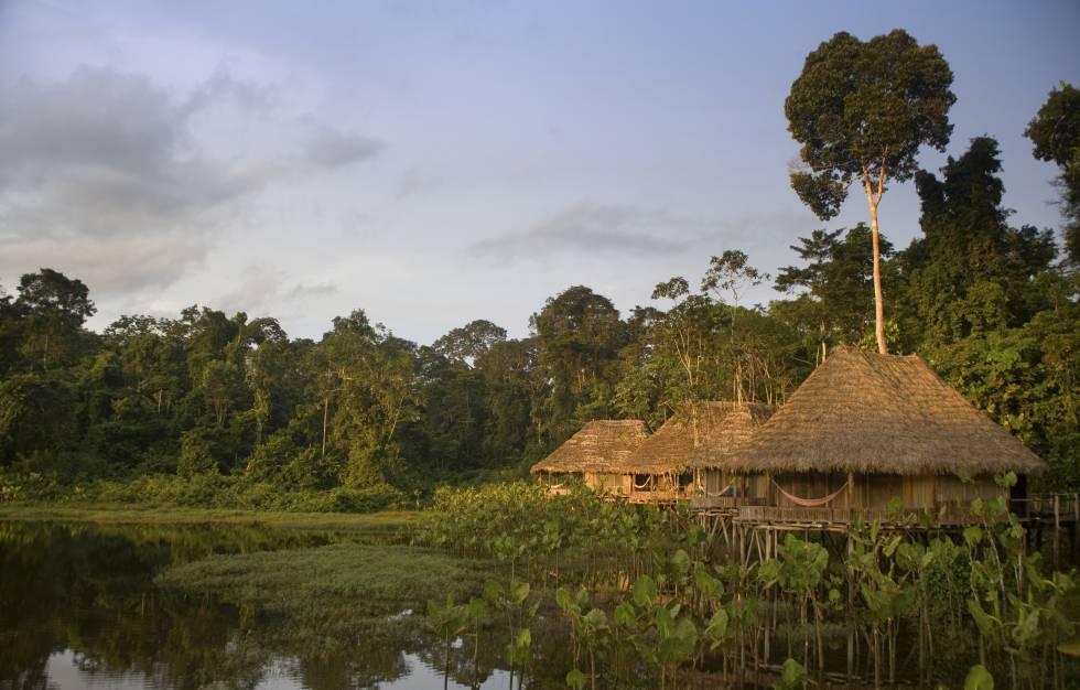 Cabañas en el Kapawi Ecolodge, frente al río Pastaza.