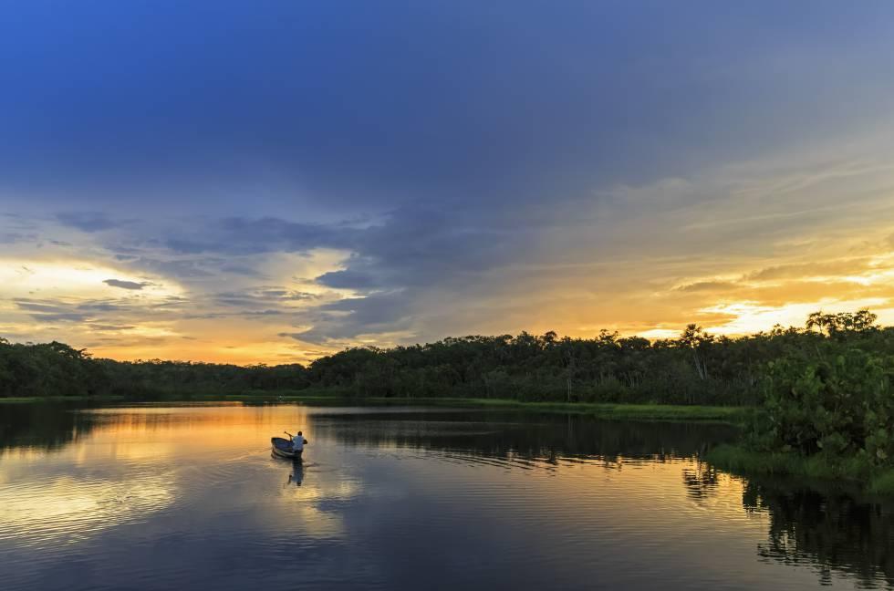 Una canoa atraviesa la laguna Pañacocha.