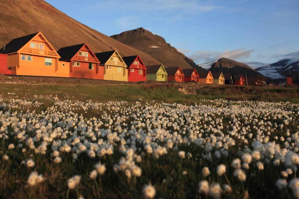 Las típicas casas de madera de colores en la localidad noruega de Longyearbyen.