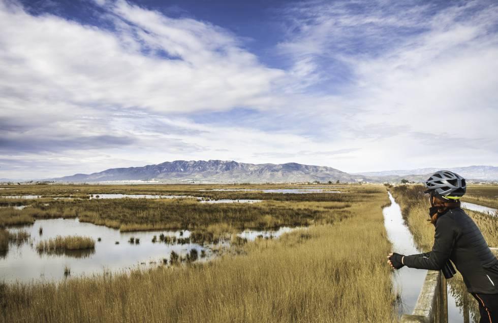 Una ciclista hace un alto en el camino para observar el paisaje del delta del Ebro.