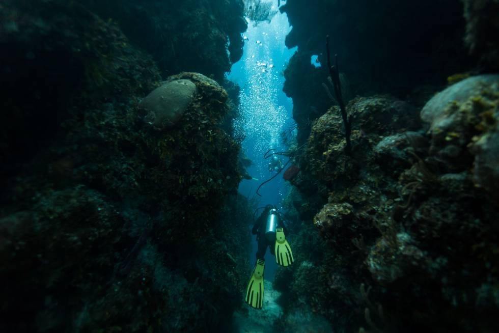 Un submarinista atraviesa un tunel en las profundidades del Gran Agujero Azul, en Belice.