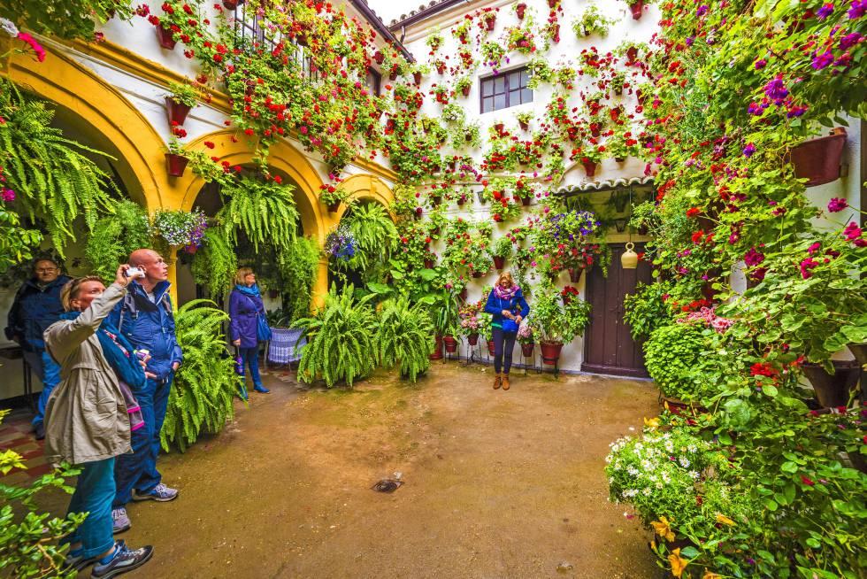 Un clásico patio cordobés recibe la visita de turistas durante el festival de los patios, que se suele celebrar en la segunda quincena de mayo.
