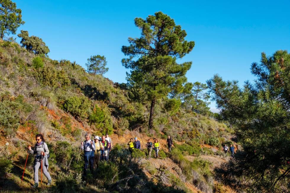 Un grupo de personas hace trekking en el parque nacional Sierra de las Nieves, en Málaga.