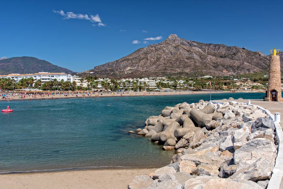 Sierra Blanca alberga una pequeña muestra de pinsapos, coníferas protegidas, que se pueden descubrir en rutas senderistas por este balcón al Mediterráneo.