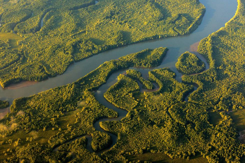 Ríos y lagos del parque nacional de Corcovado (Costa Rica), fotografiados desde un avión.