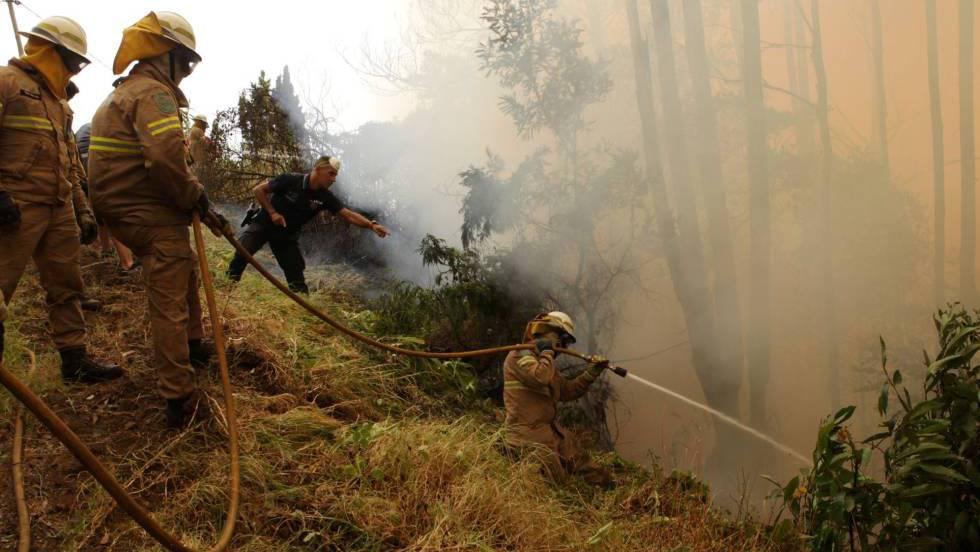 Polícia e bombeiros tentam apagar o fogo perto de Funchal (Ilha da Madeira)