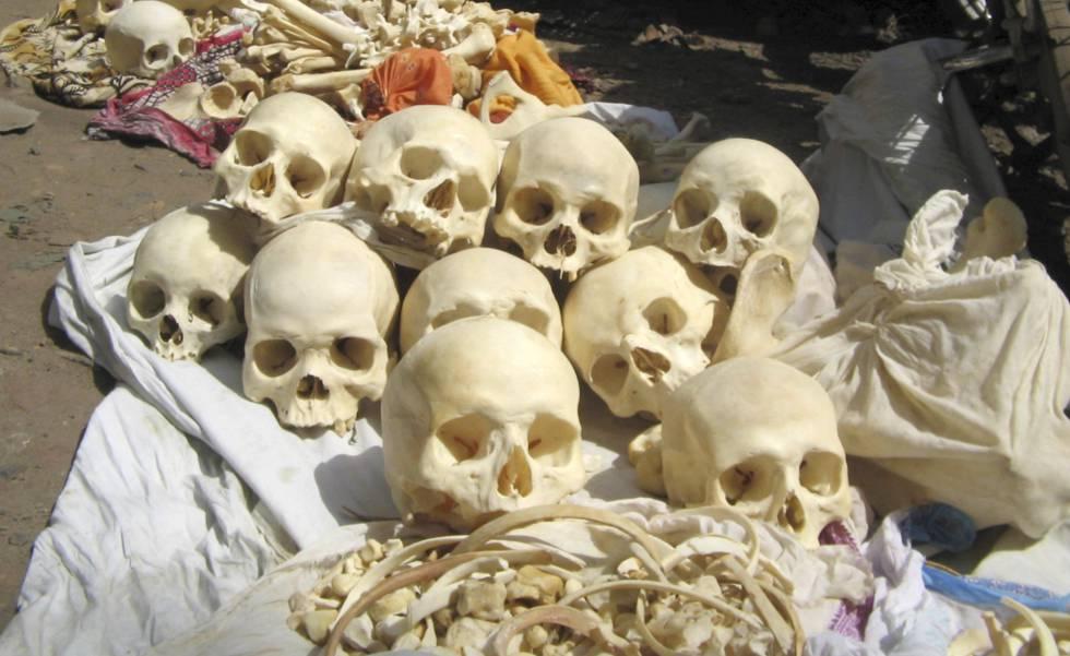 Los ladrones de huesos humanos reaparecen en India | Blog Mundo ...