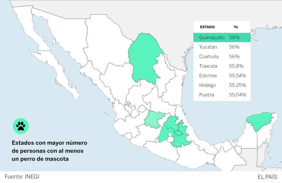 Cuáles Son Los Estados Mexicanos Que Tienen Más Perros