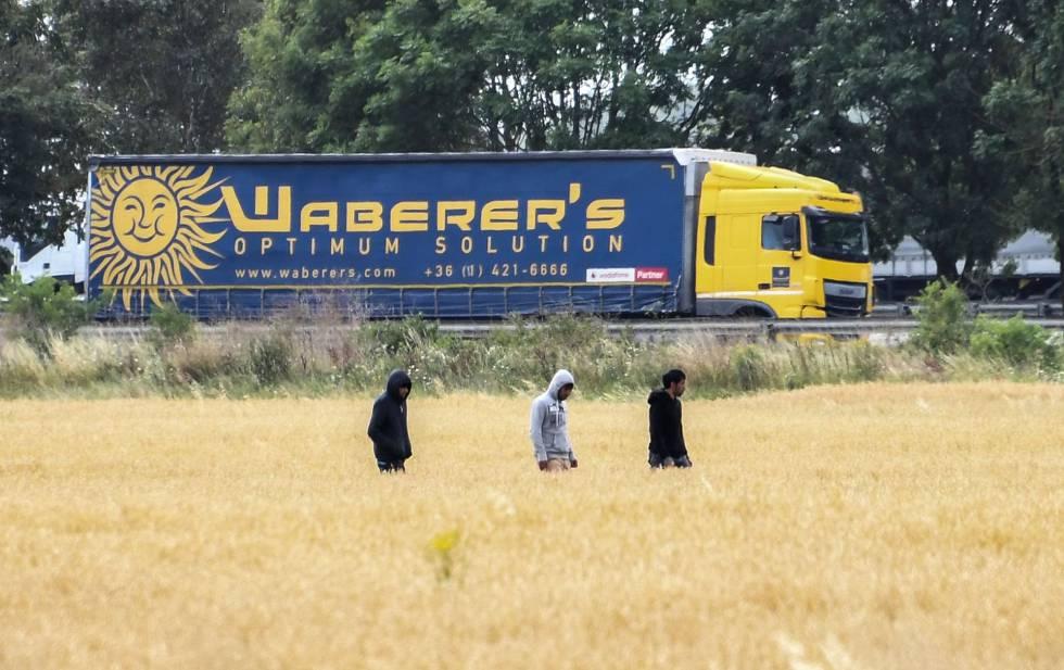 Migrantes caminan cerca de Calais