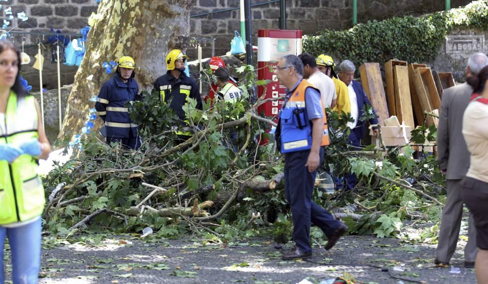 Equipos de rescate en el accidente de Madeira.