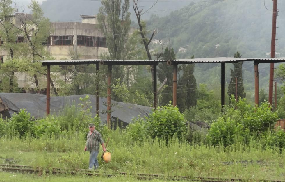 Un hombre recolecta moras en el entorno de la vía del tren de Akarmara.
