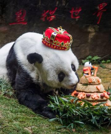 El último cumpleaños de Basi, el 18 de enero pasado.