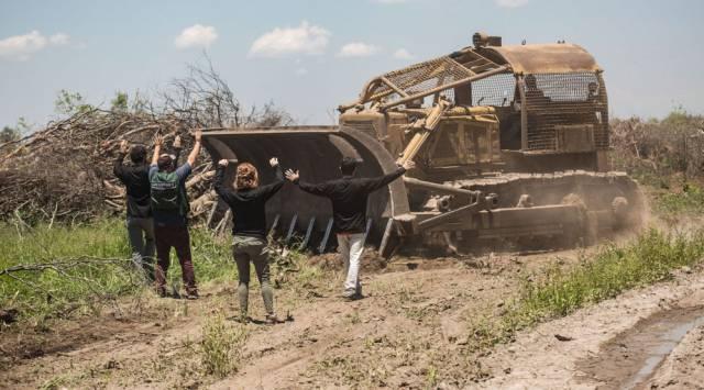 El mortífero avance de la frontera agrícola argentina