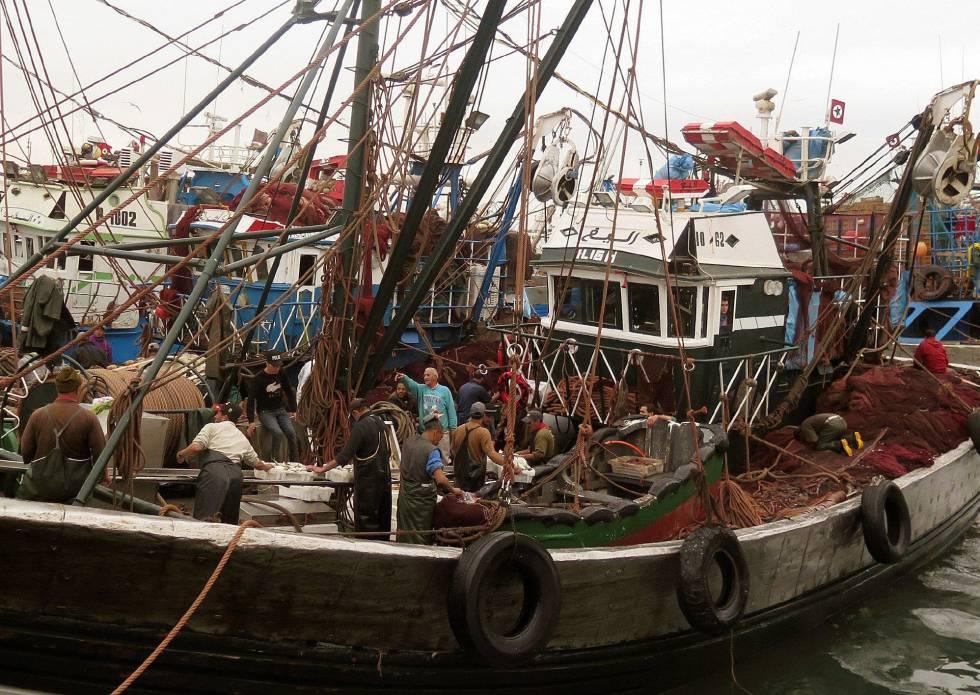 Barco pesquero marroquí en el puerto de la ciudad sahariana de Dajla, el pasado 15 de febrero.rn