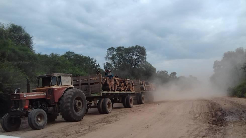 Un tractor cargado de madera rumbo a los aserraderos de Monte Quemado.