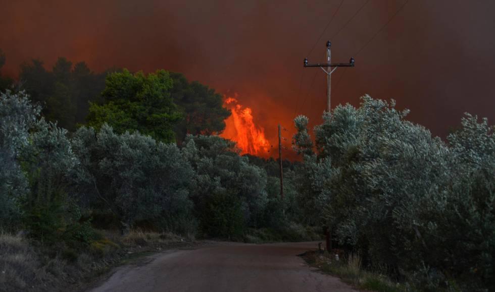 Vista del fuego en una zona forestal de Psachna, en la isla griega de Eubea, este domingo.