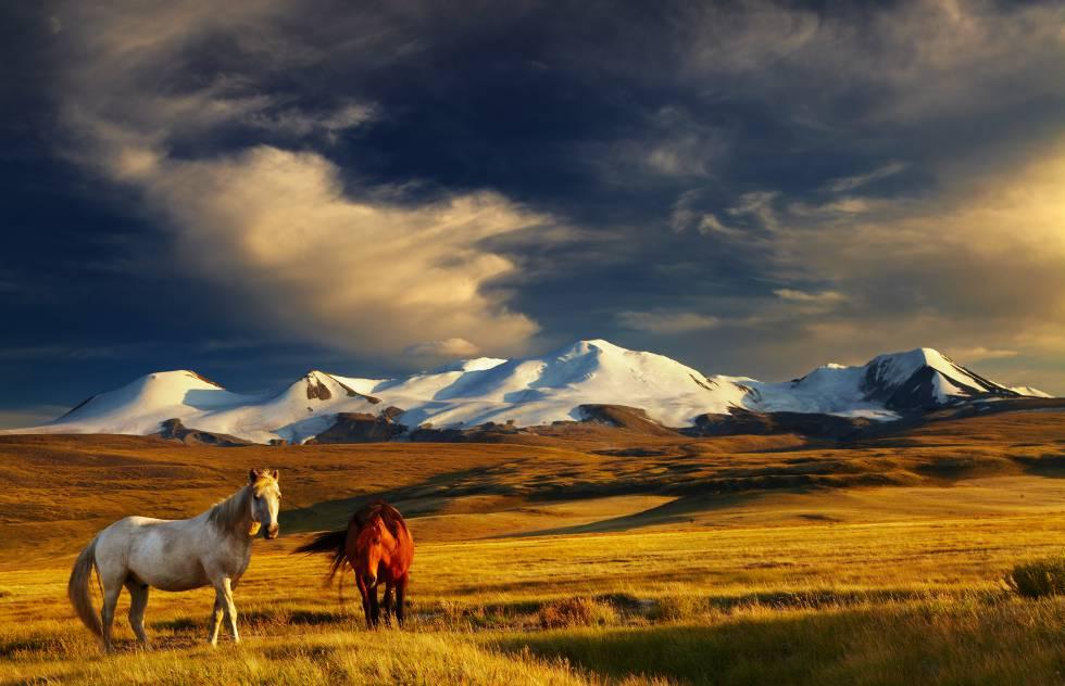 La travesía de Hungría a Mongolia del nuevo Atila | Blog Mundo Global | EL  PAÍS