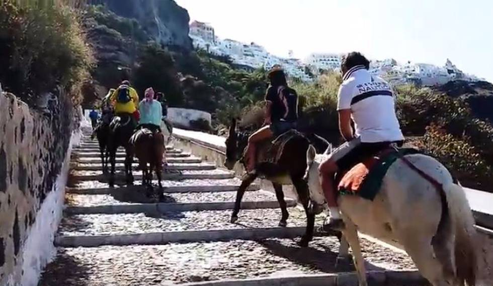 Resultat d'imatges de santorini prohibe subir a burros si pesas mas 100 kilos