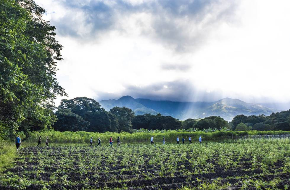 El espacio de reincorporación de Pondores está cerca de la imponente Serranía del Perijá.