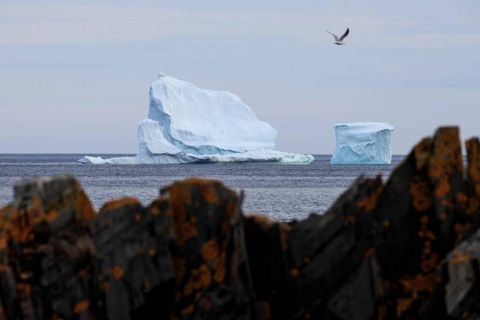 Un iceberg flota en las costas de Ferryland, Canadá.