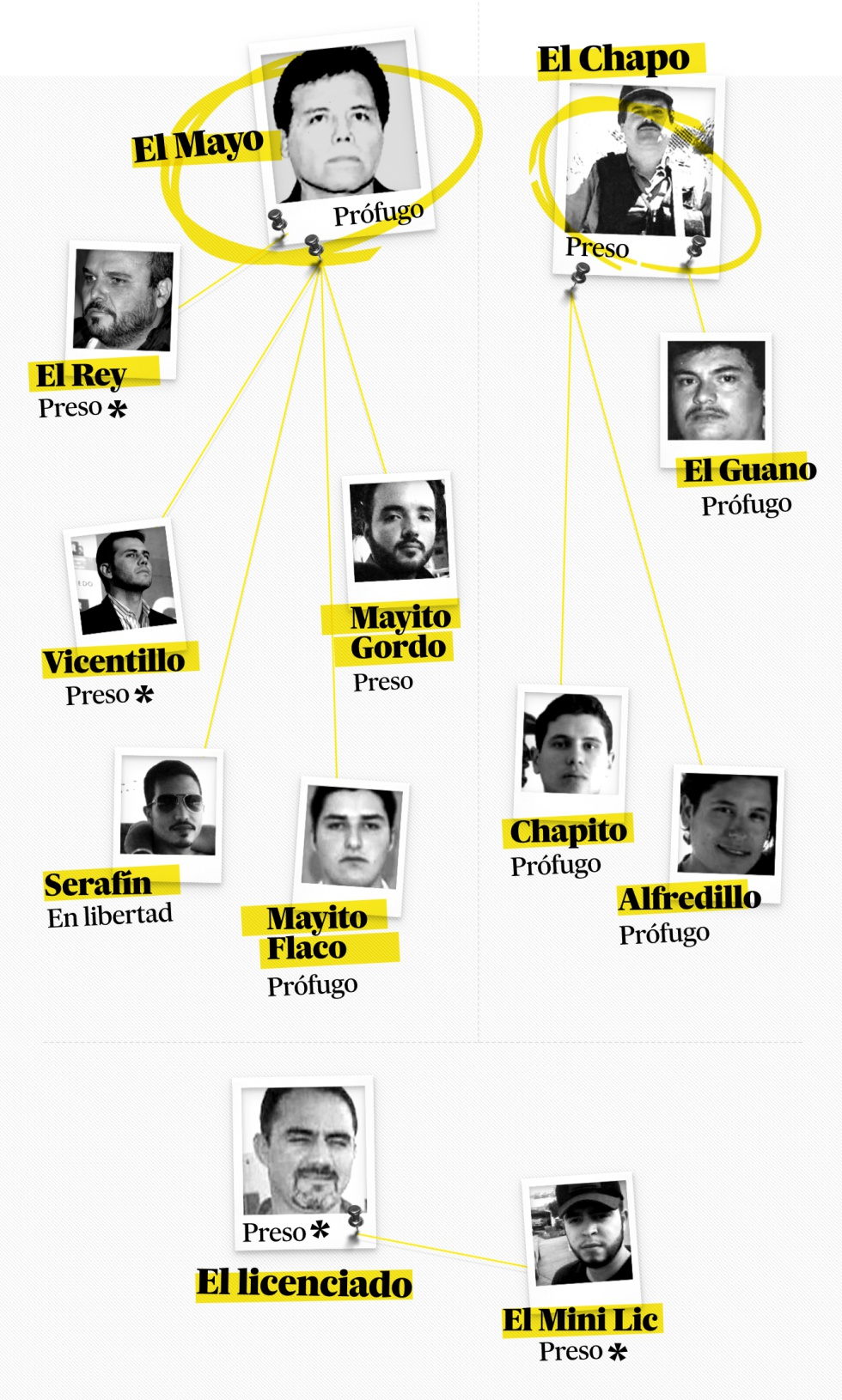 Las tres familias en liza del cartel de Sinaloa. A la izquierda, cuatro de los hijos de Ismael 'El Mayo' Zambada y su hermano Jesús, 'El Rey'. Por parte de El Chapo, su hermano Aureliano 'El Guano' Guzmán, y dos de sus hijos (Iván Archivaldo, 'Chapito', y Jesús Alfredo) quienes lucharon por el control del cartel contra Damaso López Núñez, 'El Lincenciado' (abajo), y su hijo, El MiniLic. Marcados con un * aquellos narcos que testificaron en el juicio de El Chapo.