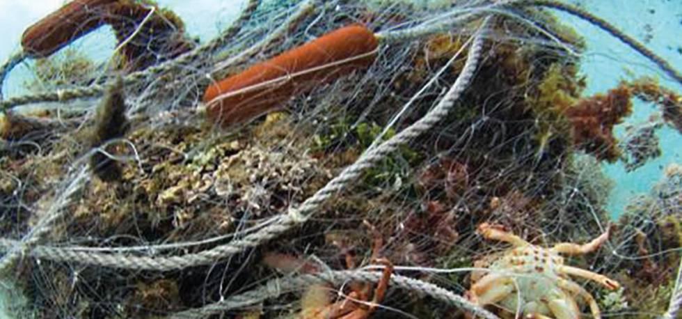 12 ideas para combatir la contaminación marina en el Caribe