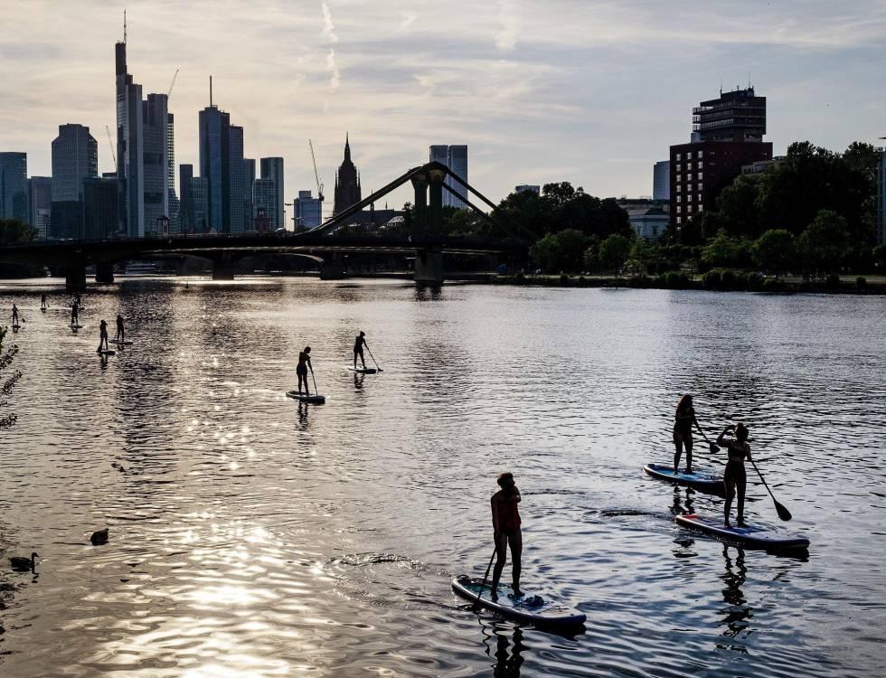 Un grupo de personas practican deporte acuático en el río Meno en Frankfurt.
