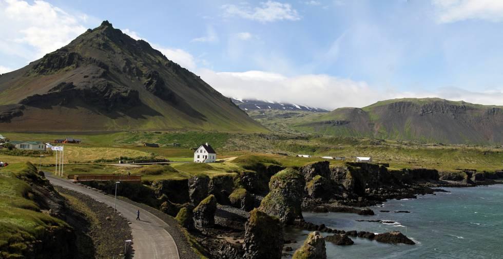 Islandia recupera los bosques que arrasaron los vikingos hace mil años