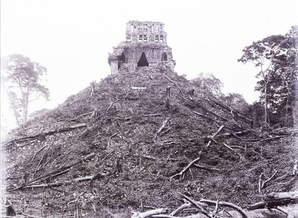 1891 2019 Diario Fotográfico Del Explorador Maudslay En México Blog La Serpiente Emplumada El País