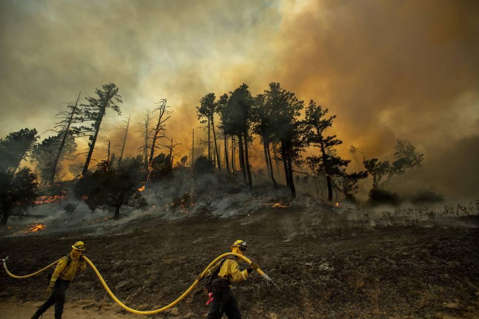 Bomberos en uno de los frentes del Kicade Fire en Sonoma, el sábado.