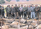 Targets in Púnica graft probe enjoyed lavish hunting trips
