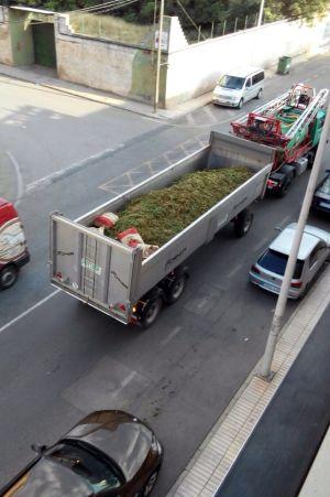 grow-shop-cogolandia-camion-con-marihuana-cannabis-narcotrafico
