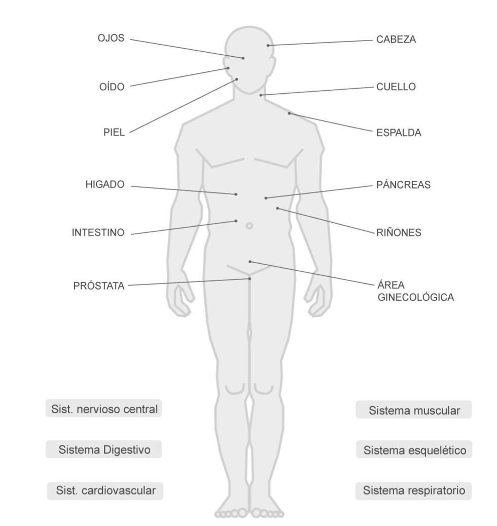 LOS ENSAYOS QUE INVESTIGAN EL CANNABIS COMO MEDICINA.   Más de 600 estudios han analizado la función terapéutica de esta sustancia en los últimos años.