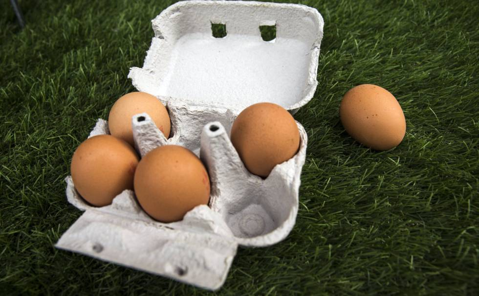 huevos contaminados fipronil
