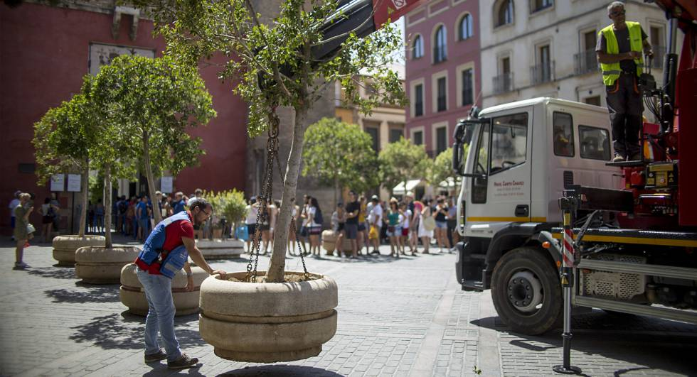 Large planters are placed in the tourist areas of Seville.