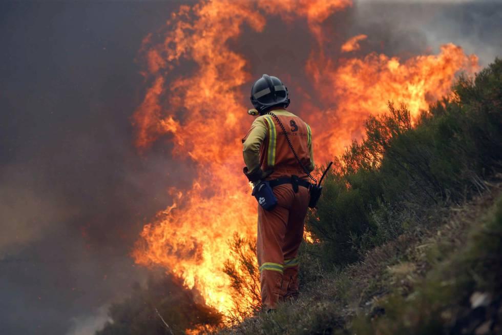 Un bombero en las inmediaciones de la Reserva de la Biosfera de Muniellos, Asturias.