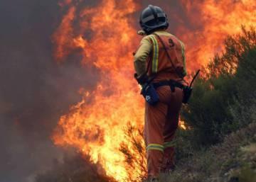 Las llamas amenazan un tesoro forestal de Asturias