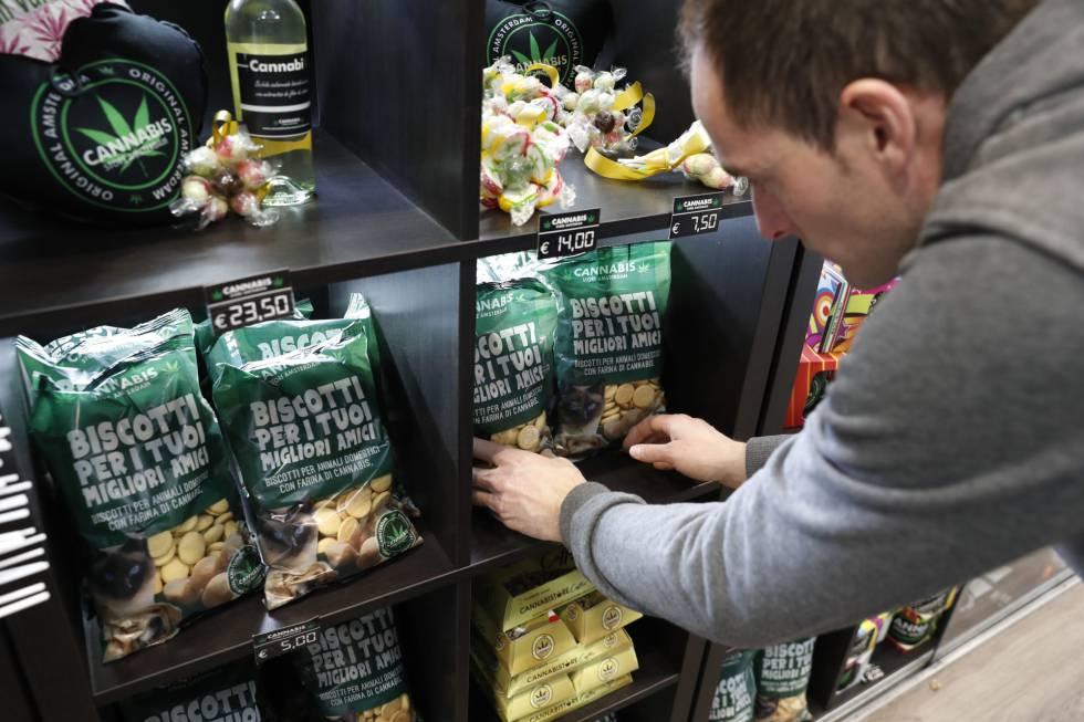 Comida para gatos hecha a partir de cannabis.