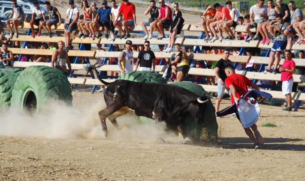 Bullfighting injuries: Spanish man dies after being gored at El