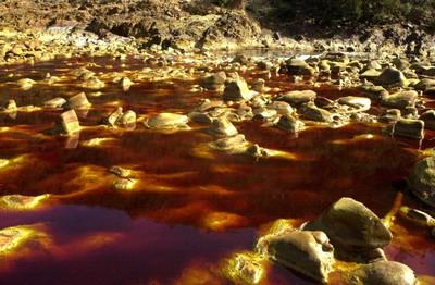 Resultado de imagen de Las bacterias del Rio tinto de Huelva