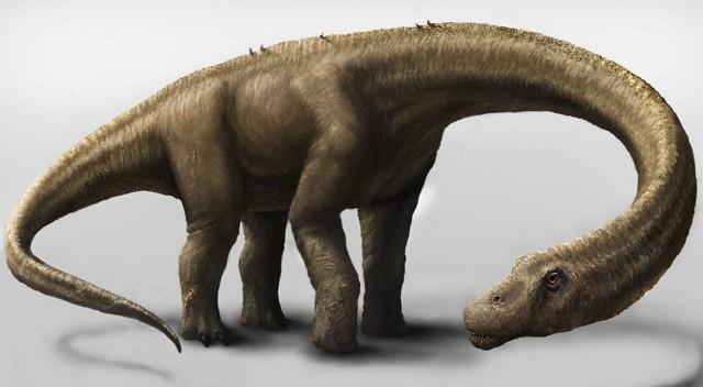 Descubierto en la Patagonia argentina el esqueleto de un enorme dinosaurio