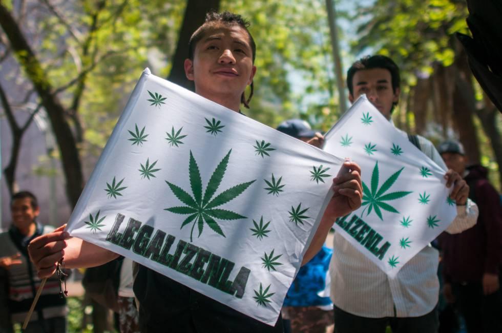 marihuana mexico